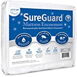 Queen (17-20 in. Deep) SureGuard Mattress Encasement - 100% Waterproof, Bed Bug Proof, Hypoallergenic - Premium Zippered Six-Sided Cover - 10 Year Warranty