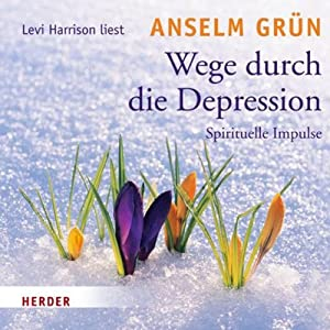 Wege durch die Depression Hörbuch