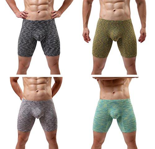 Fitting Boxers - ECHOINE Men's Performance Long-Leg Boxer Brief 4 Pack Asian 2XL