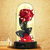 Beauty and the Beast Rose, Red Silk Rose in a Glass Dome with Fallen Petals & LED on a Base, 7 Color Led Lights Changing for Home Decor - Gift for Valentine's Day Wedding Anniversary Birthday