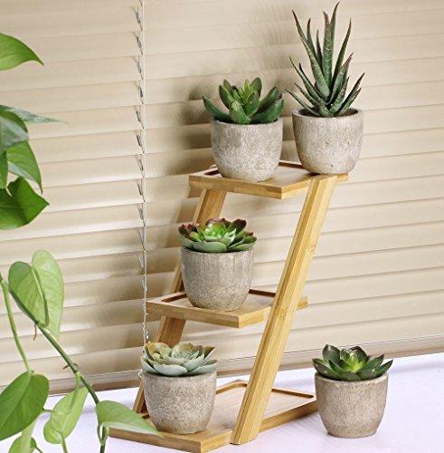 assorted decorative faux succulent artificial succulent cactus import it all. Black Bedroom Furniture Sets. Home Design Ideas