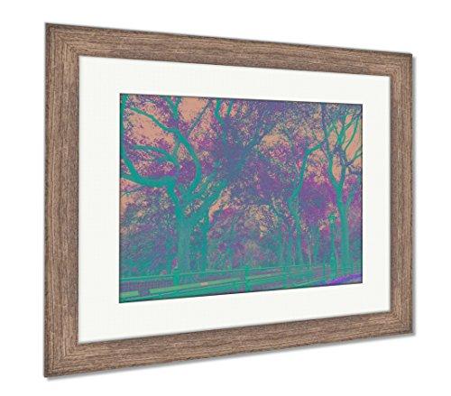 Ashley Framed Prints Central Park, Wall Art Home Decoration, Color, 30x35 (Frame Size), Rustic Barn Wood Frame, -