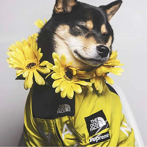 """""""The Dog Face"""" Fashion Dog Clothes Jacket Polyester Pets Outfits Cute Dogs Decorations Coats Clothes for Costume…"""