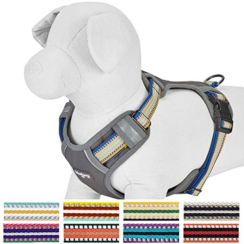Blueberry Pet New 9 Colors Soft & Comfy 3M Reflective Multi-colored Stripe Padded Dog Harness Vest, Chest Girth 22