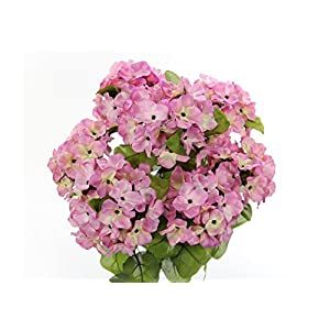JenlyFavors 22 Inch X-Large Satin Artificial Hydrangea Silk Flower Bush 7 Heads Orchid Cream 4