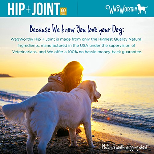 WagWorthy Naturals Advanced Hip and Joint Supplement for Dogs with Chondroitin, MSM and Glucosamine for Dogs, Improves Mobility, Arthritis Pain Relief for Dogs, 60 Chewable Tablets, Made in USA