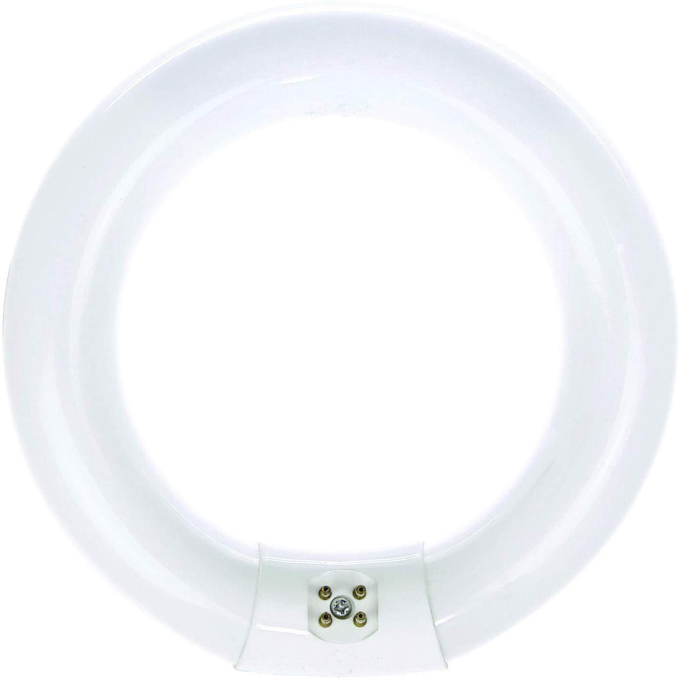 Bulbmaster FC8T9/CW 22 Watt 8 Inch Round T9 Fluorescent Circular Light Bulb, Cool White 4100K, 1120 Lumens G10Q 4-Pin Base 22W Circline Ceiling Lights