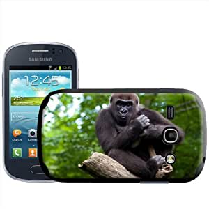 Fancy A Snuggle - Carcasa rígida para Samsung Galaxy Fame S6810, diseño de primer plano de gorila