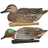 AvianX Top Flight Duck Green Wing Teal Floater Decoy (6 Pack), Brown