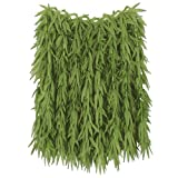Beistle 50456 Tropical Fern Leaf Hula Skirt, 36'' Width by 24'' Length