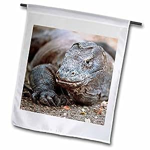 fl_73174_1 Danita Delimont - Lizards - Indonesia, Sunda Archipelago, Komodo Dragon lizard-AS11 JST0015 - Jay Sturdevant - Flags - 12 x 18 inch Garden Flag