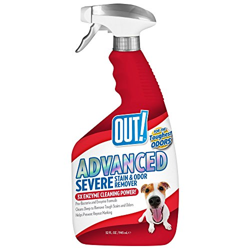 (OUT! Advanced Stain and Odor Remover | Pet Stain and Odor Remover | 32 Ounces)