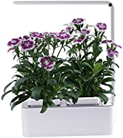 Indoor Herb Garden, AIBIS Hydroponics Watering Growing System, Organic Home Herbs Gardening Kit with Led Grow Light, Not Contain Seeds, Best for Flower and Vegetable like Thyme, Mint and Tomato(White)