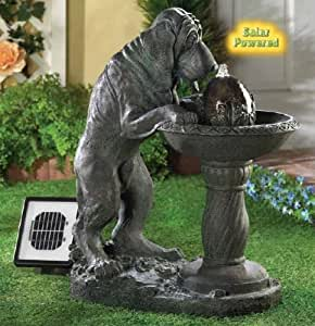 Amazon.com : Solar Dog Pet Hound Statue Bird Bath Outdoor
