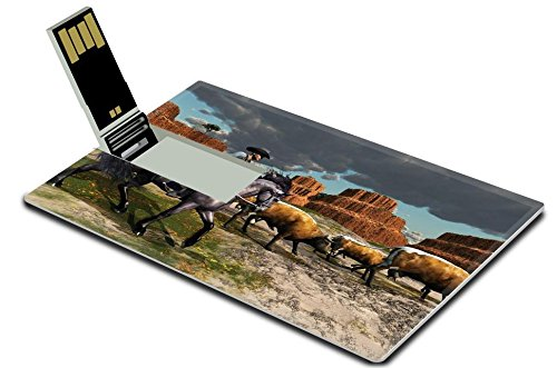 liili-32gb-usb-flash-drive-20-memory-stick-credit-card-size-image-id-11011045-cowboy-01-a-wrangler-a