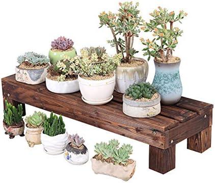 Estantes de Plantas Soporte de exhibición de Flores, Escaleras ...