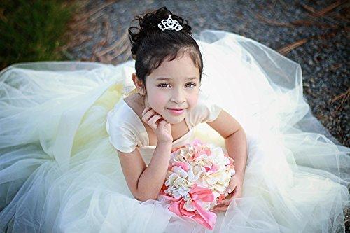 Butterfly Craze Princess Crown Comb Mini Tiara...