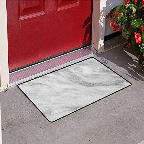 Gloria Johnson Marble Welcome Door mat Marble Surface Textured Hazy Cracks and Veins Shady Limestone Ceramic Artful Print Door mat is odorless and Durable W15.7 x L23.6 Inch Grey Dust ()