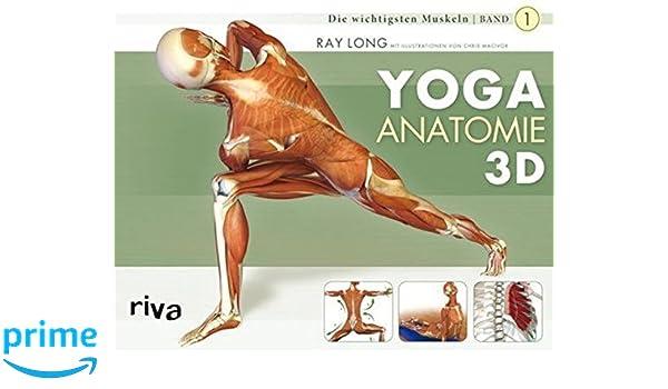 Yoga-Anatomie 3D: Band 1: Die wichtigsten Muskeln: Amazon.es ...