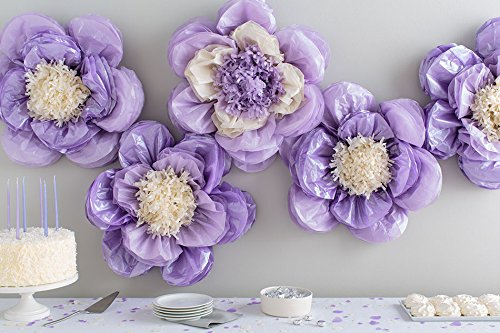 Amazon martha stewart crafts 44 10221 tissue pom pom kit lilac amazon martha stewart crafts 44 10221 tissue pom pom kit lilac purple pansy flowers violet mightylinksfo