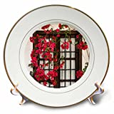 3dRose Danita Delimont - Flowers - Spain, Andalusia. Cordoba. Red bougainvillea and house window. - 8 inch Porcelain Plate (cp_277893_1)