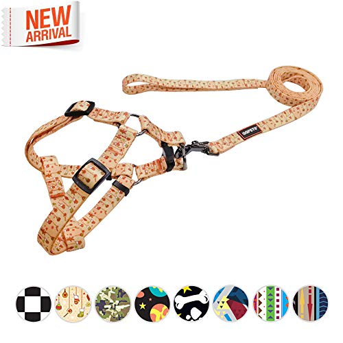 QQPETS Cute Step-in Dog Harness and Leash Set Durable Soft Nylon No-Pull Dog Harness for Small Medium Puppy Breed Girl Boy Walking Training Running Adjustable Chest 19