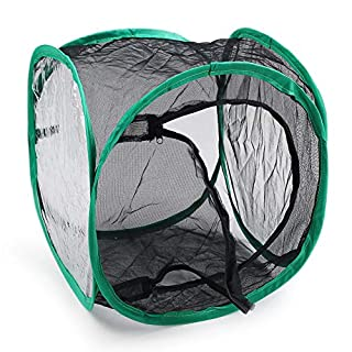 Miraclekoo Insect and Butterfly Habitat Cage Terrarium Pop-up (12 x 12 x 12 inch)