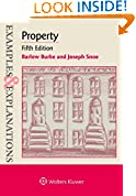 #5: Examples & Explanations for Property