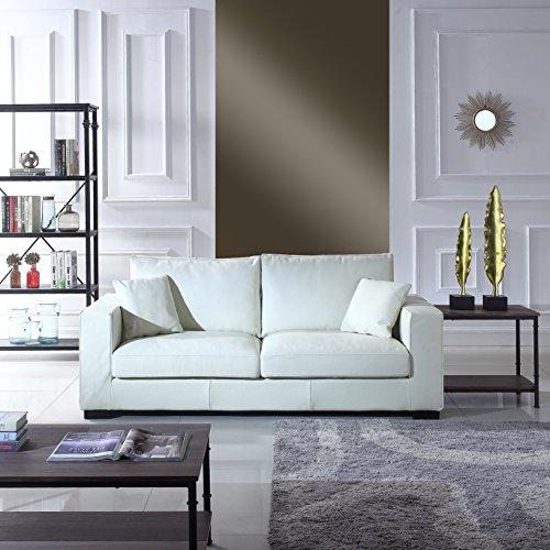 White Leather Sofas Couches
