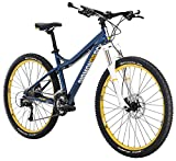 Diamondback Bicycles Lux Sport Women's Hardtail Mountain Bike, 17″/Medium, Gloss Cyan For Sale