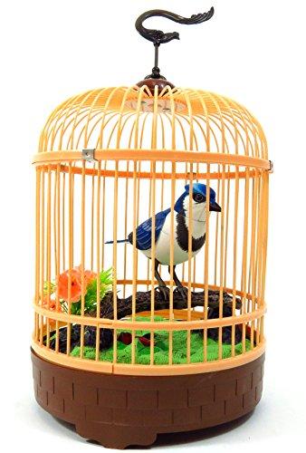 PowerTRC Singing & Chirping Bird in Cage - Realistic Soun...