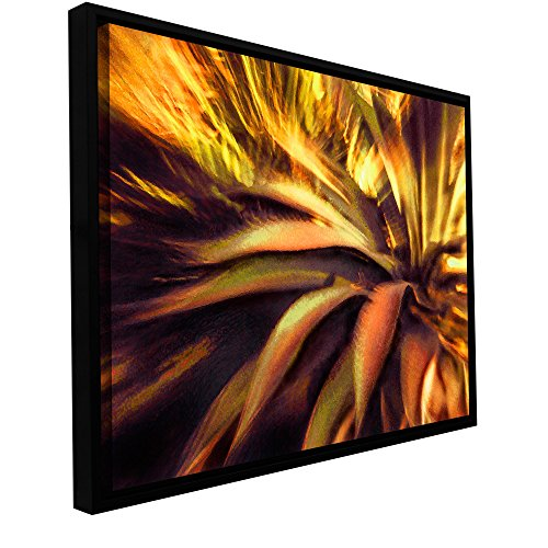 - ArtWall Dean Uhlinger Agave Puesta Floater Framed Gallery-Wrapped Canvas Art Work, 36-Inch by 48-Inch