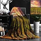 Unique Custom Flannel Blankets Napa Valley Vineyards Autumn Sunrise Super Soft Blanketry