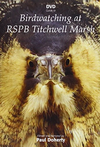 Birdwatching At RSPB Titchwell Marsh Region 2