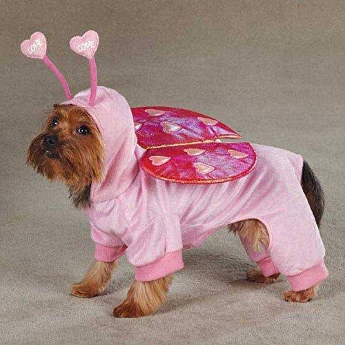 [Love Bug Costumes for Dogs - Medium Cute Dog Costume !] (Cute Female Dog Costumes)