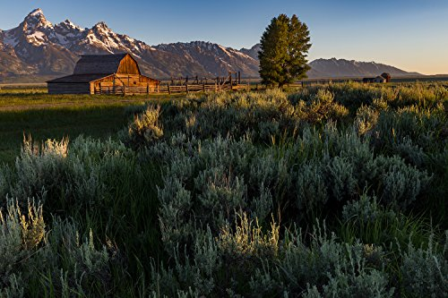 Utah Nature Photography 24x36 Inch Nature Art Print Grand Tetons National Park of the TO Moulton Barn at Sunrise with Mountains in the Distance | Exceptional Quality Art Poster Direct From The Artist - Moulton Art Print Poster