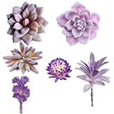 Aisamco 6 Pcs Artificial Succulents Assorted Faux Succulent in Different Purple Fake Hanging Succulents Textured Faux Succulent for Plants Wall Decoration DIY Materials Wedding Centerpieces