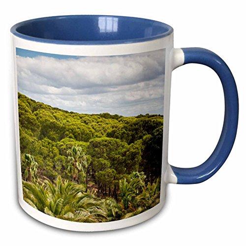 Seppeltsfield Cellar - 3dRose Danita Delimont - Australia - Australia, Barossa Valley, Seppeltsfield, Winery, palm trees - 15oz Two-Tone Blue Mug (mug_226316_11)