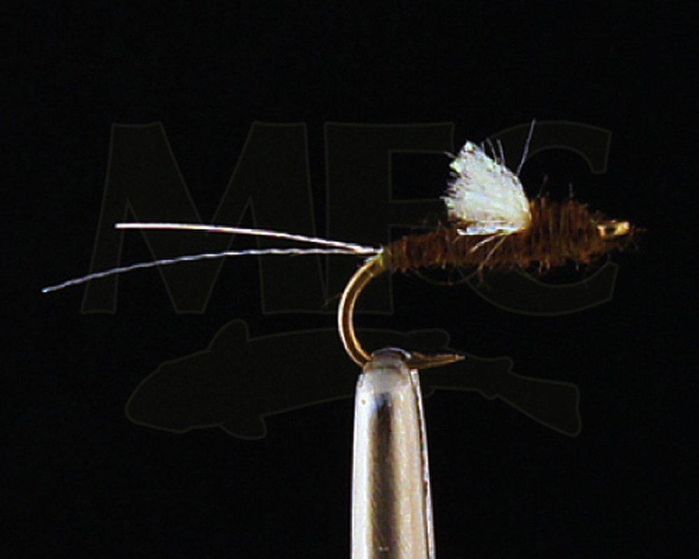 Montana Fly会社JuanのSparkle Wing rs2 22 オリーブ 1 Wing dozen 22 オリーブ B071VBCZZG, コレクト&コレクト:5ab6581e --- hasznalttraktor.e-tarhely.info