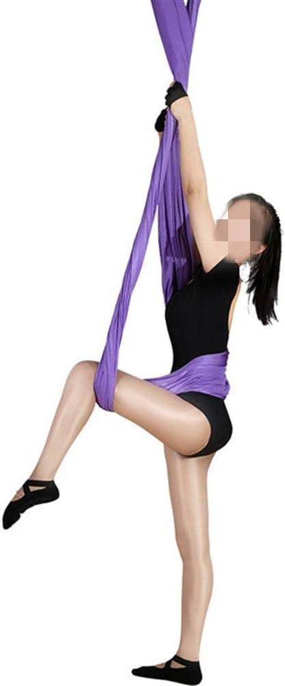 Portátil Yoga Gimnasio Largo de Yoga antigravedad Hamaca aérea Micro-elástico de la Correa de Hogares de Yoga elástico Cintura para Viajes al Aire Libre (Color : Purple, Size : 280x500cm)