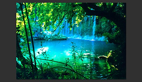 artgeist Photo Wallpaper Waterfall Nature 154''x110'' XXL Peel and Stick Self-Adhesive Foil Wall Mural Removable Sticker Premium Print Picture Image Design Home Decor c-B-0132-a-a by artgeist (Image #4)