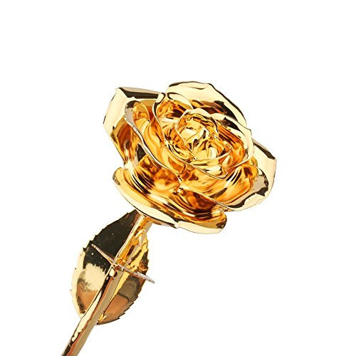 ZJchao Dipped Gold Flower Wrapped