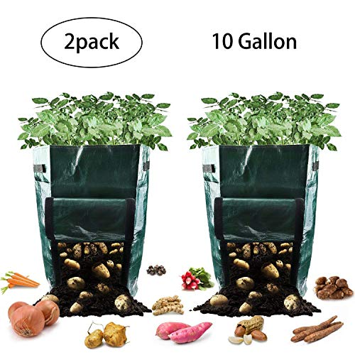 Potato Grow Bags, 10 Gallon Garden Planter Plant Growing Bag with Flap and Handles Heavy Duty and Durable Potato Pots for Vegetables, Fruit, Carrot, Tomato, Onion, 2 ()