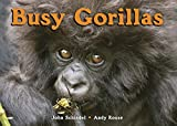 img - for Busy Gorillas (A Busy Book) book / textbook / text book