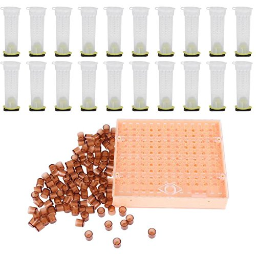 A Frame House Kits - Sala-Store - Plastic Queen Bee Cultivate Box with 110 Brown Cell Cups 20 Bee Cages Frame Beekeeper Equipment Practical Bee Tools