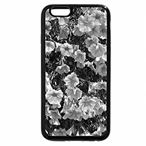 iPhone 6S Plus Case, iPhone 6 Plus Case (Black & White) - Colorful Flowers a garden makeup 21