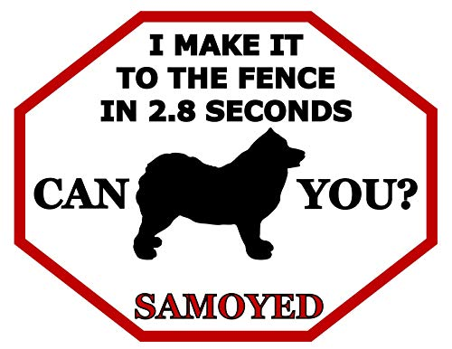 Top Shelf Novelties I Make It to The Fence in 2.8 Seconds Can You? Samoyed (Silhouette) Laminated Dog Sign (Includes Bonus I Love My Dog Decal) SP1499 (Attn: This is Not an Octagon Shaped Sign) ()
