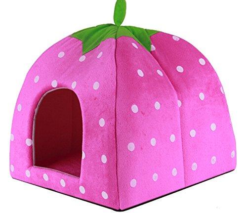amazon cat house - 4