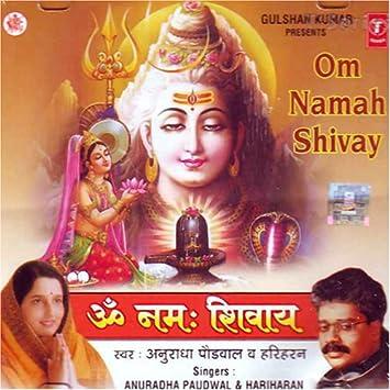 Anuradha paudwal & hariharan - Om namah shivay - Amazon com