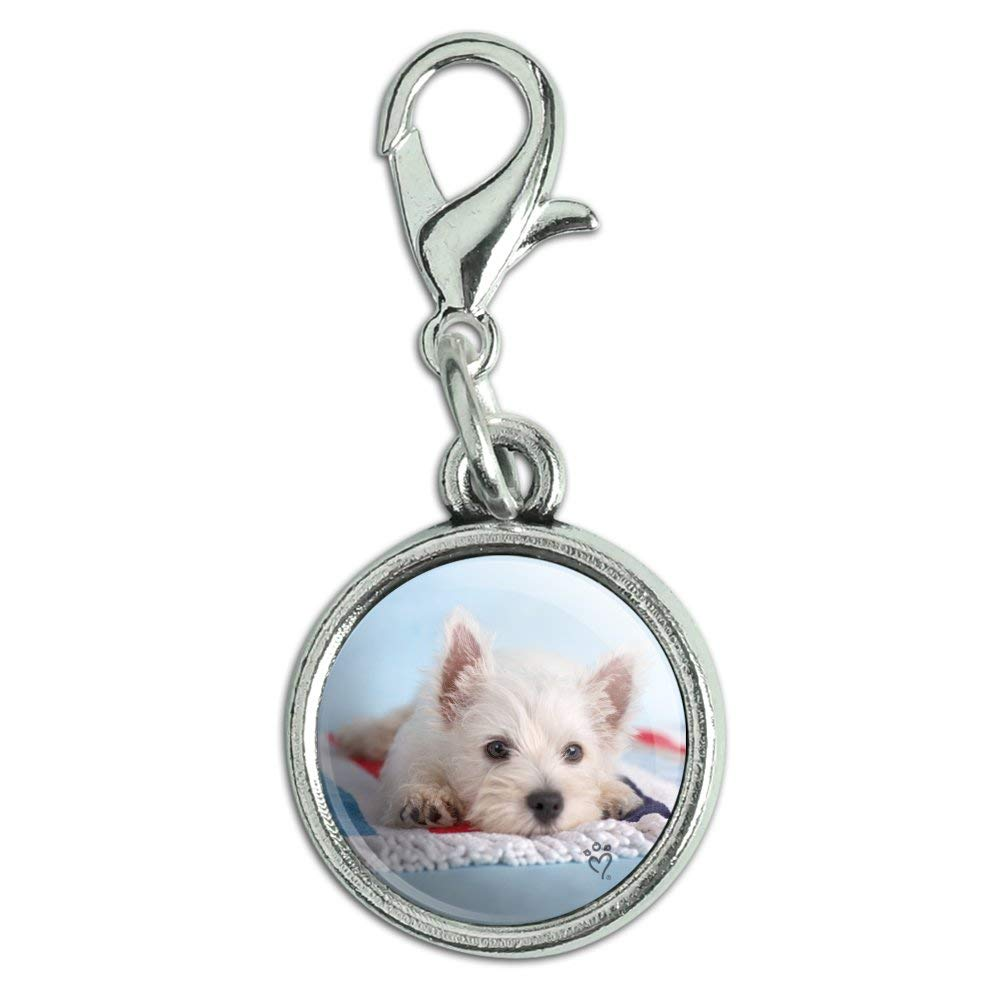 GRAPHICS /& MORE West Highland Terrier Westie Puppy Dog Beach Towel Antiqued Bracelet Pendant Zipper Pull Charm with Lobster Clasp